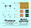 Proteus Photoetch Set from ParaGrafix